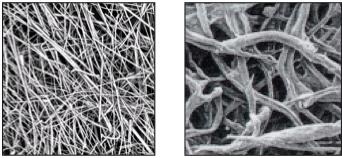 glass vs. cellulose fibers